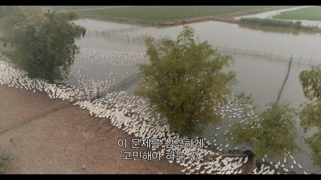 seon20200229-15
